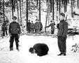 Дезертиры на Великой Отечественной: как было на самом деле