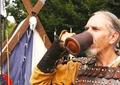 Напитки долголетия. Чай викингов