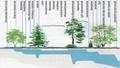 Поиск воды с помощью растений-индикаторов